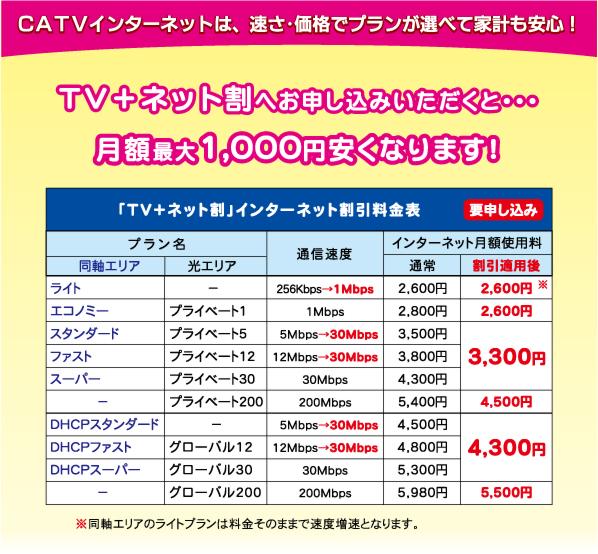 テレビ インターネット